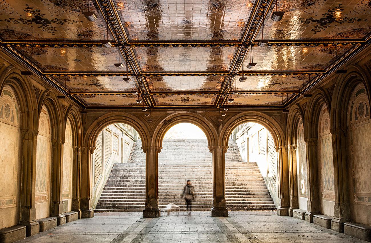 Central Park Terrace